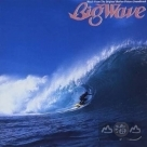 【日版】Big Wave (30th Anniversary Edition)